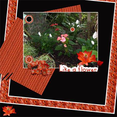 http://i63.servimg.com/u/f63/11/03/37/75/verosc15.jpg