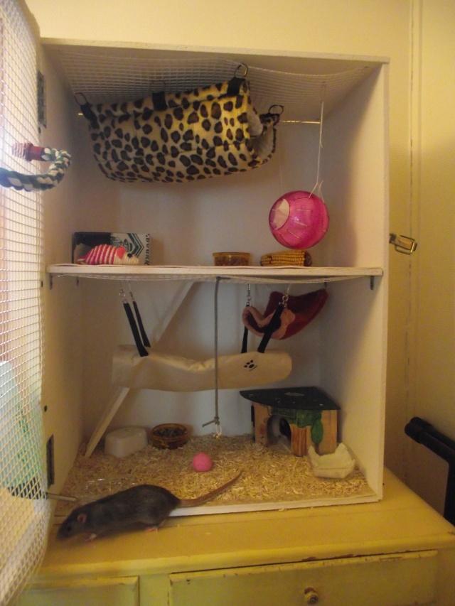 tuto fabriquer une cage soit meme. Black Bedroom Furniture Sets. Home Design Ideas