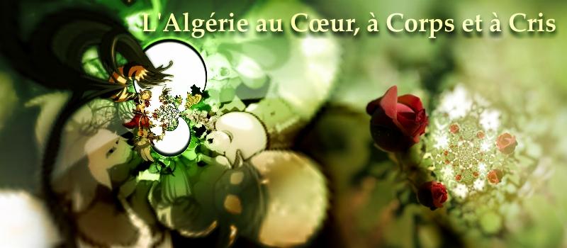 L'Algérie au coeur, à corps et à cris! - Want Too Free! Viva l'Algérie!