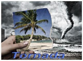 . : : : : : : TnA.Zone: : : : : : .