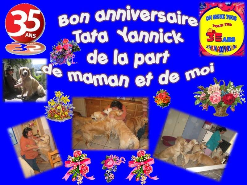 Diamond Et Hector Les Goldinoux Bon Anniversaire Tata Yannick