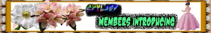 Members Introducing