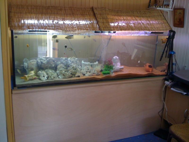 73 savoie vend aquarium 650 litres for Vend aquarium