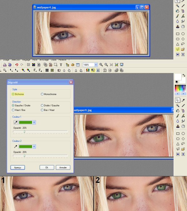 Diff rents tutoriaux page 5 for Effet miroir photofiltre