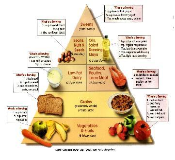 منتدي التغذية