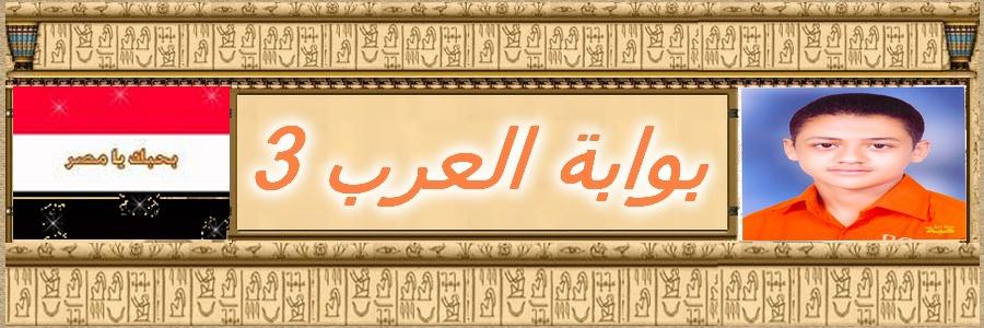بوابة العرب 3