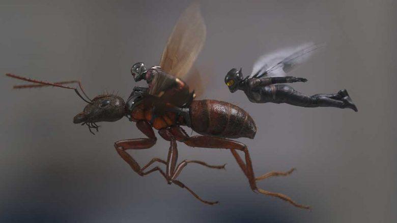 Ant-ManAndTheWasp